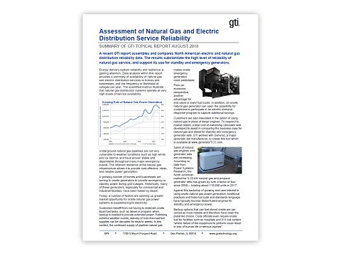 Assessment of Natural Gas and Electric Distribution Service Reliability