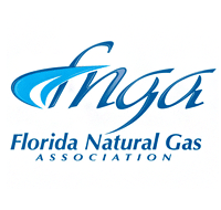 Natural Gas Reliability